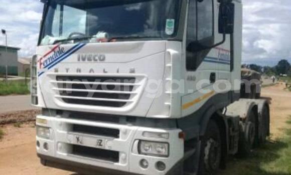 Buy Used Iveco Stralis White Truck in Blantyre in Malawi