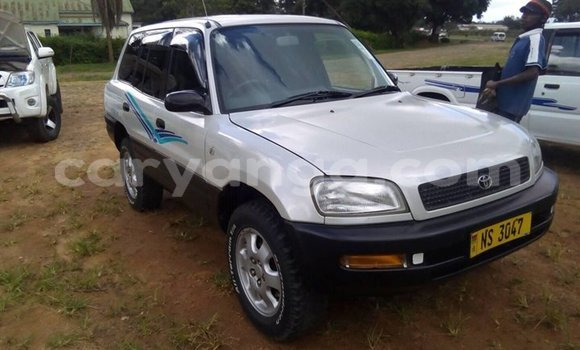 Buy Used Toyota RAV4 Silver Car in Blantyre in Malawi