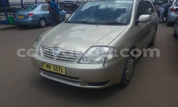 Buy Used Toyota Allex Other Car in Blantyre in Malawi