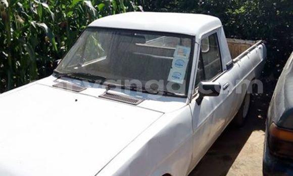 Buy Used Nissan Pickup White Car in Lilongwe in Malawi