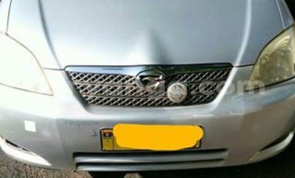 Buy Used Toyota Runx Silver Car in Lilongwe in Malawi