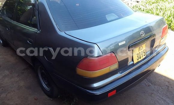 Buy Used Toyota Corolla Other Car in Lilongwe in Malawi
