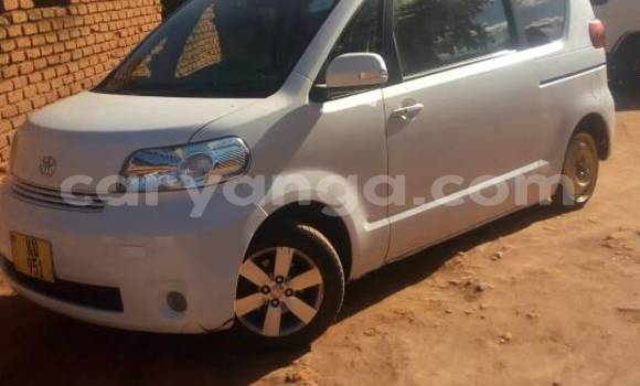 Buy Used Toyota Porte White Car in Kasungu in Malawi