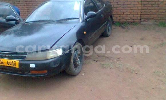 Buy Used Toyota 4Runner Black Car in Blantyre in Malawi