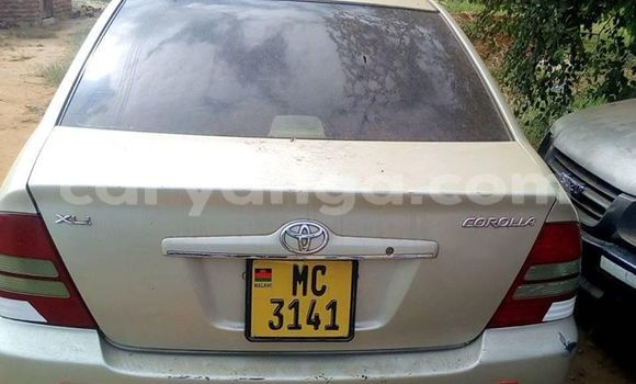 Buy Used Toyota Corolla Silver Car in Kasungu in Malawi