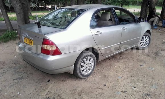 Buy Used Toyota Corolla Silver Car in Blantyre in Malawi