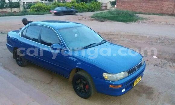 Buy Used Toyota Corolla Blue Car in Lilongwe in Malawi