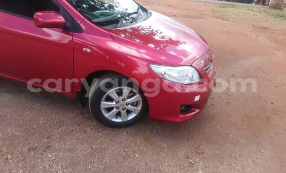 Buy Used Toyota Corolla Red Car in Lilongwe in Malawi
