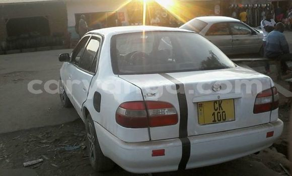Buy Used Toyota Corolla White Car in Ntchisi in Ntchisi