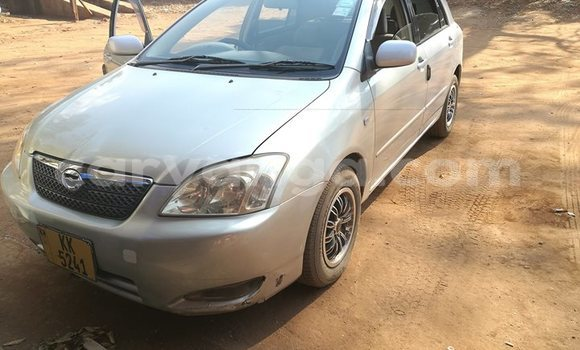 Buy Used Toyota Runx Other Car in Lilongwe in Malawi