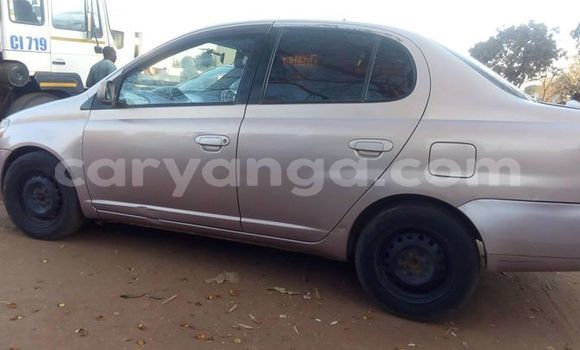 Buy Used Toyota Platz Other Car in Kasungu in Malawi