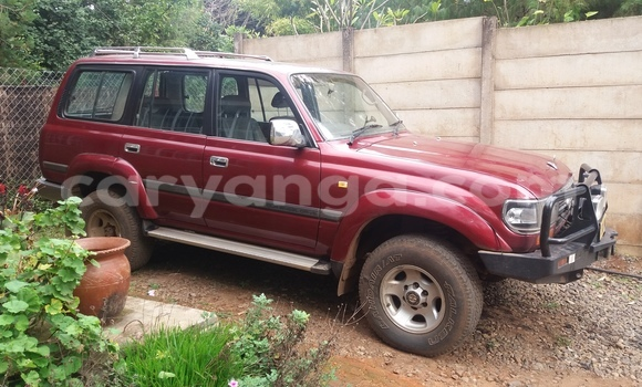 Buy Used Toyota Land Cruiser Other Car in Blantyre in Malawi