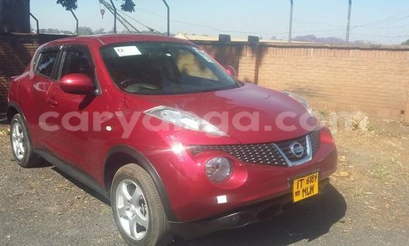 Buy Used Nissan Juke Red Car in Blantyre in Malawi