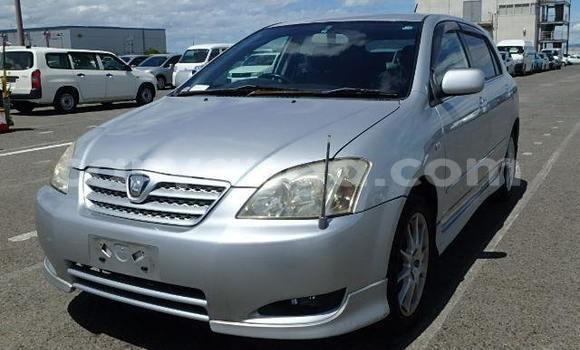 Buy Used Toyota Allex Silver Car in Lilongwe in Malawi