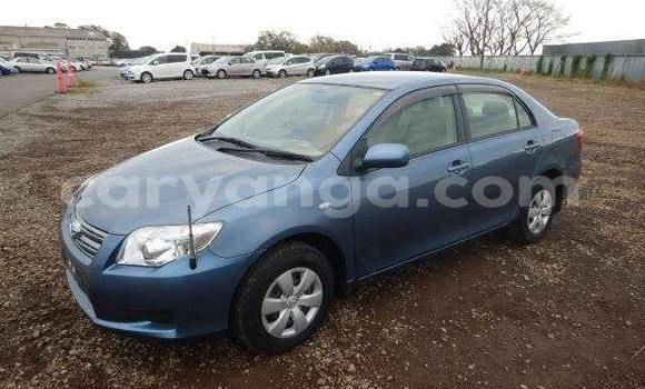 Buy Used Toyota Axio Blue Car in Blantyre in Malawi