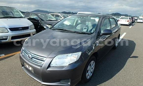 Buy Import Toyota Axio Other Car in Blantyre in Malawi