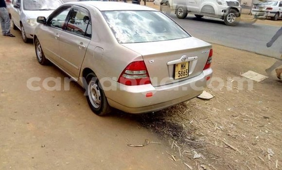 Buy Imported Toyota Corolla Other Car in Kasungu in Malawi