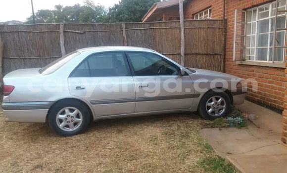 Buy Used Toyota Celica Black Car in Limbe in Malawi