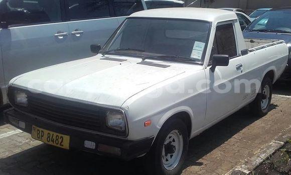 Buy Used Nissan Almera Black Car in Limbe in Malawi