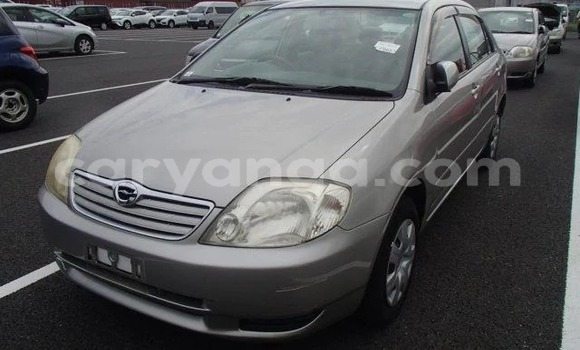 Buy Import Toyota Corolla Other Car in Blantyre in Malawi