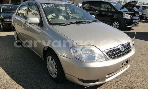 Buy Imported Toyota Corolla Other Car in Blantyre in Malawi