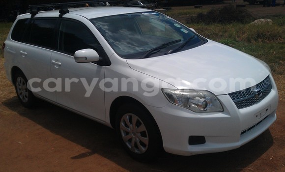 Buy New Toyota Fielder White Car in Lilongwe in Malawi
