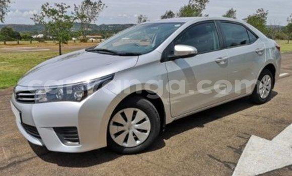 Buy Used Toyota Corolla Silver Car in Chilumba in Karonga