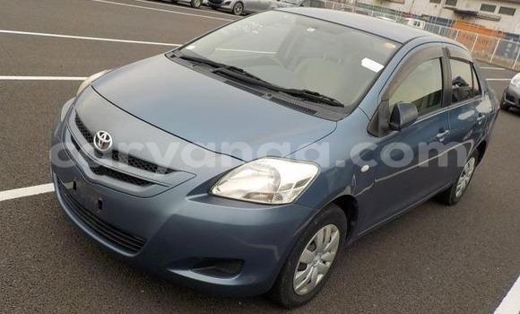 Buy Imported Toyota Belta Blue Car in Lilongwe in Malawi
