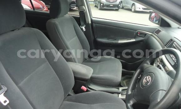 Buy Used Toyota Runx Silver Car in Blantyre in Malawi