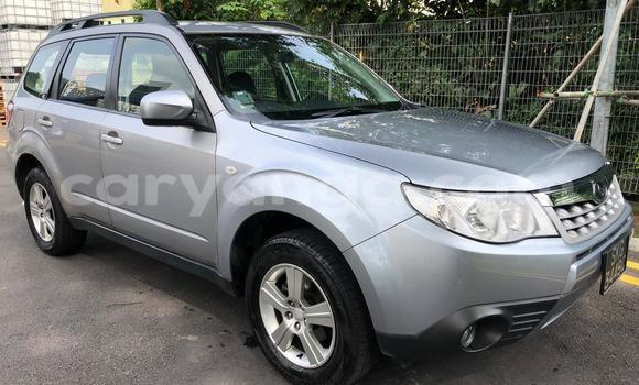 Buy Used Subaru Forester Silver Car in Blantyre in Malawi