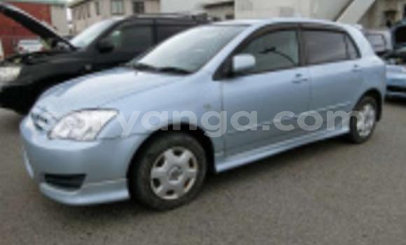 Buy Import Toyota Runx Black Car in Blantyre in Malawi